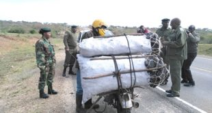 Kenya Forest Service(KFS) officers arrest a cyclist ferrying charcoal along the Nairobi -Namanga road at Ilbissil area. Photo/Christine Tarayie