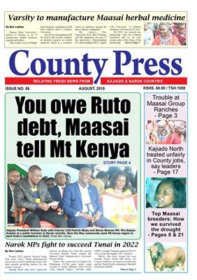 CountyPress Newspaper V85